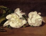 Edouard Manet : Branch Of White Peonies With Pruning Shears